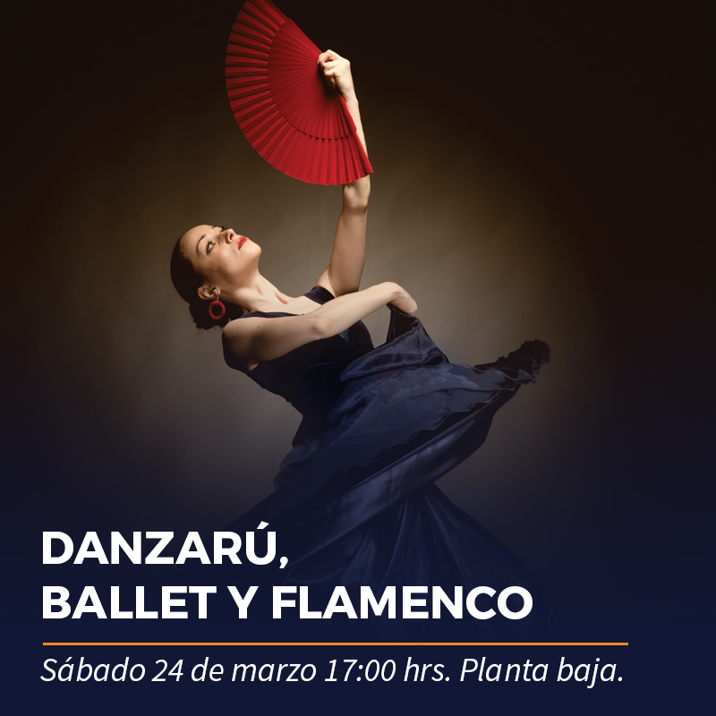 Danzarú, Ballet y Flamenco