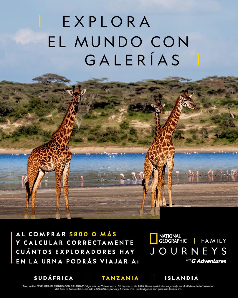 Explora el mundo con Galerías Tanzania
